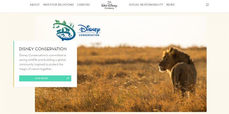 Disney Conservation Fund 2020
