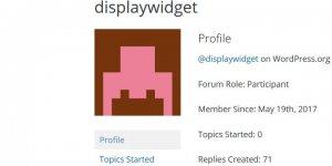 Untrusted Display Widget Plugin Developer Profile