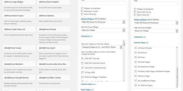 Display Widgets Plugin Version 4