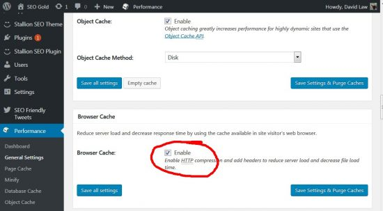 Enable W3 Total Cache Plugins Browser Cache