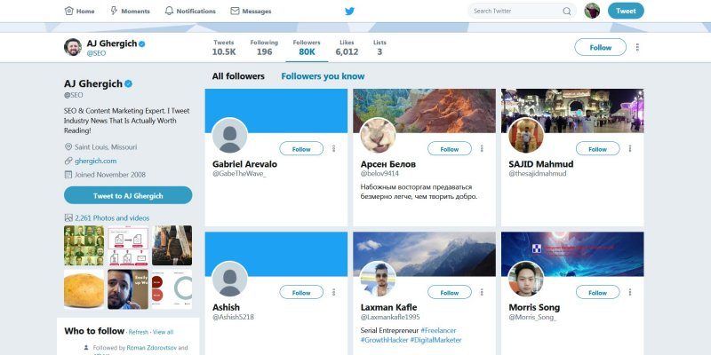 Example Twitter Followers Page