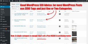 For most WordPress Posts use ZERO Tags and just One or Two Categories