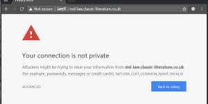 Google Chrome Your Connection Is Not Private Warning