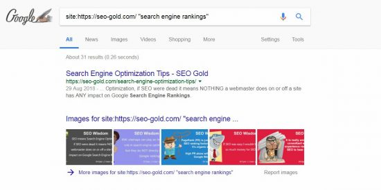 Google Site Search Exact Match