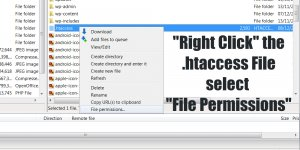 How to Change WordPress .htaccess Permissions