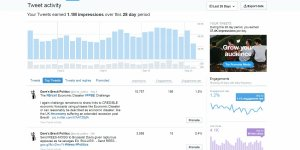 Increase Twitter Impressions to One Million a Month in One Year