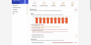 Lighthouse Page Speed Results for Neil Patel What Is SEO
