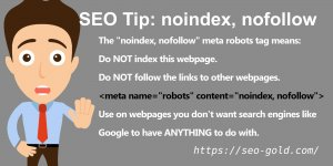 meta name=robots content=noindex, nofollow