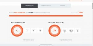 Neil Patel SEO Analysis Tool Results