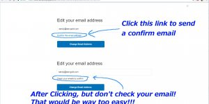 PayPal Sandbox Confirm This Email Address
