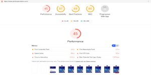 Pimlico Plumbers Website Review