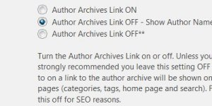 Stallion Responsive SEO Theme Author Archive Link