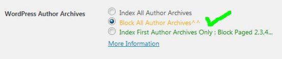 Stallion WordPress SEO Not Index Author Archives
