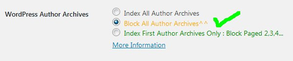 Stallion WordPress SEO Not Index Author Archives
