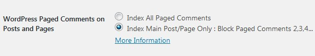 Stallion WordPress SEO Plugin Index First Paged Comment