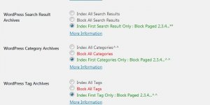 Stallion WordPress SEO Plugin Not Index Options