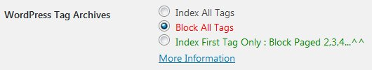 Stallion WordPress SEO Plugin Not Index Tag Options