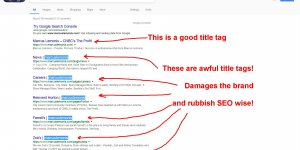 Title Tag SEO and Branding Mistake