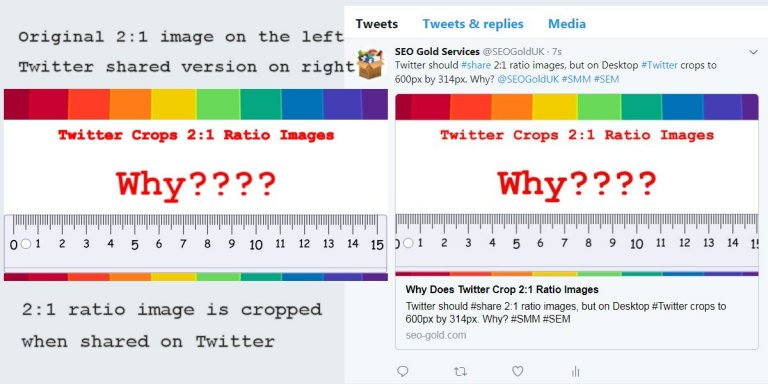 Twitter Crops Shared Images Screenshot