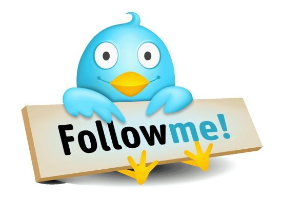Twitter Follow Tips