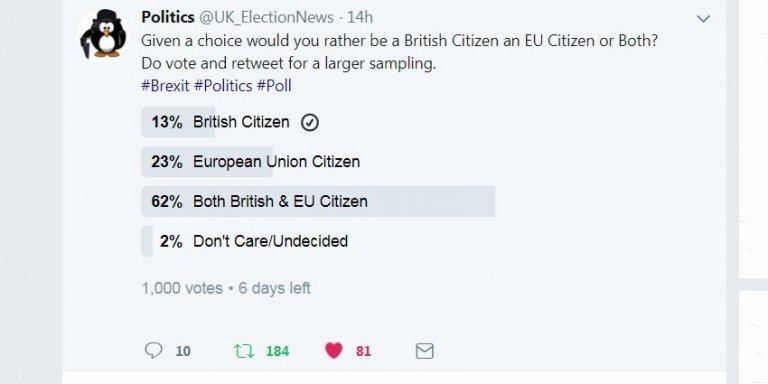 Twitter Polls are Popular