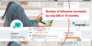 Very Slow Twitter Follower Growth