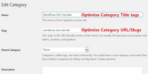 WordPress Category Slug Title Tag SEO