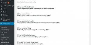 WordPress Plugin Browser Cache Options