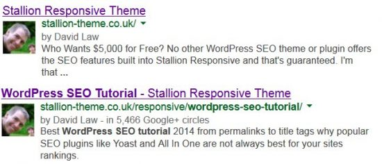 WordPress SEO Tutorial Google Search